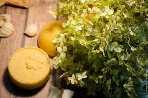 Ингредиенты для шампуня